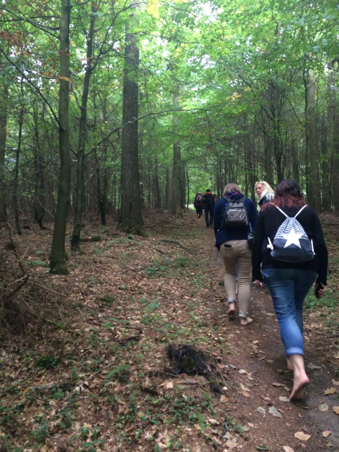Wanderung im Wald